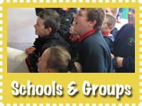 school_groups